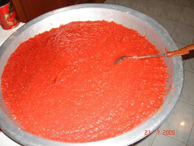 تجميع الكمية الأولى المفرومة من الطماطم الخالص
