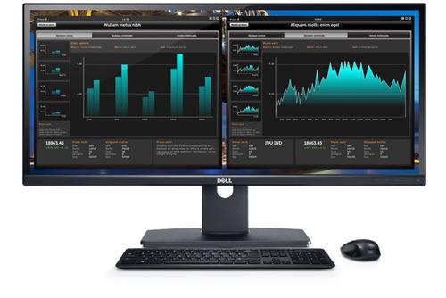 Dell UltraSharp U2913WM 29-Inch Ultra-Wide LED-Lit Monitor